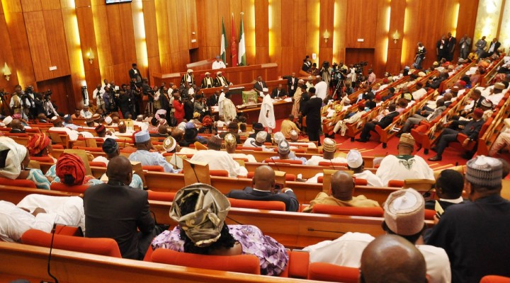 Is it constitutionally possible to abolish the Nigerian Senate?