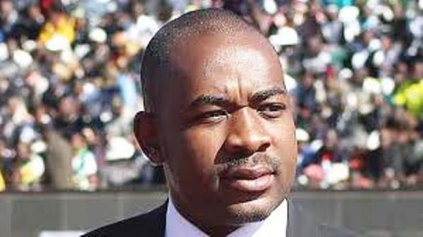 Nelson Chamisa, MDC Alliance