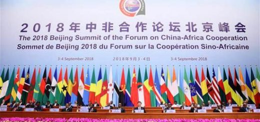 2018 Beijing Summit of the Forum on China-Africa Cooperation
