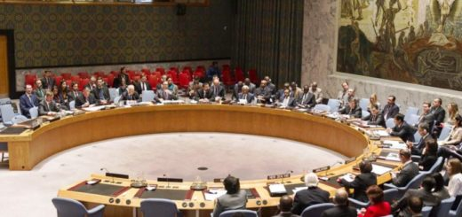 Security Council on Congo