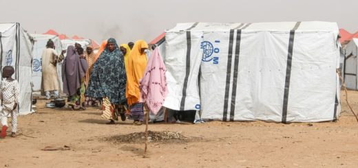 Northeast Nigeria displacement crisis